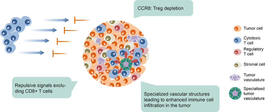 T-Cell Depletion
